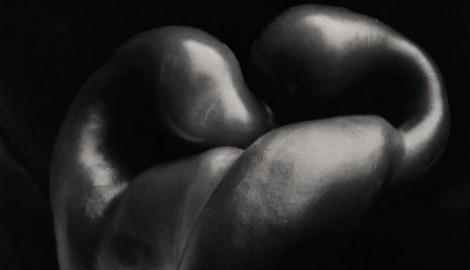 Magie des Objektes Edward Weston