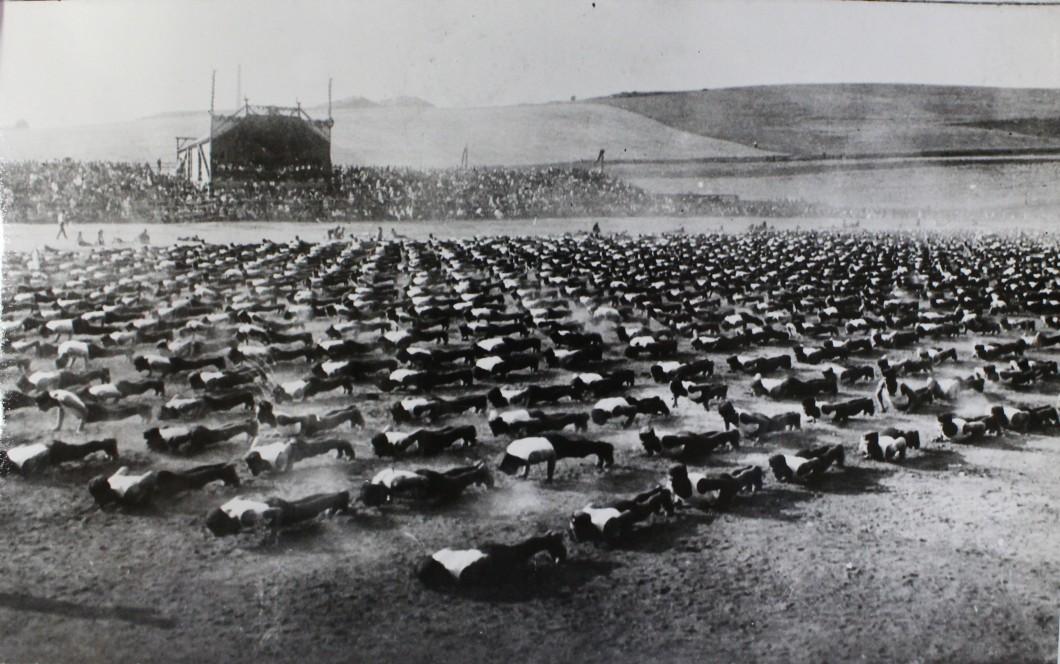 Zemská spartakiáda FDTJ 5.-9. července 1922. AMB, fond U5, inv. č. XXVIIb42