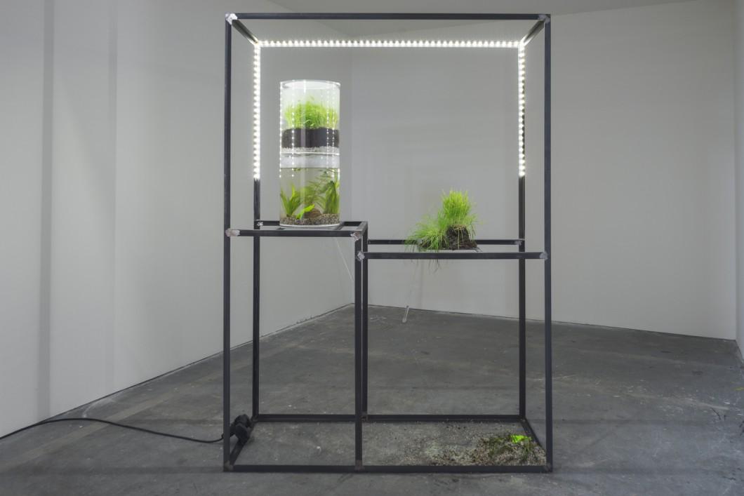 11_Anna Slama, antipro, 2016, installation