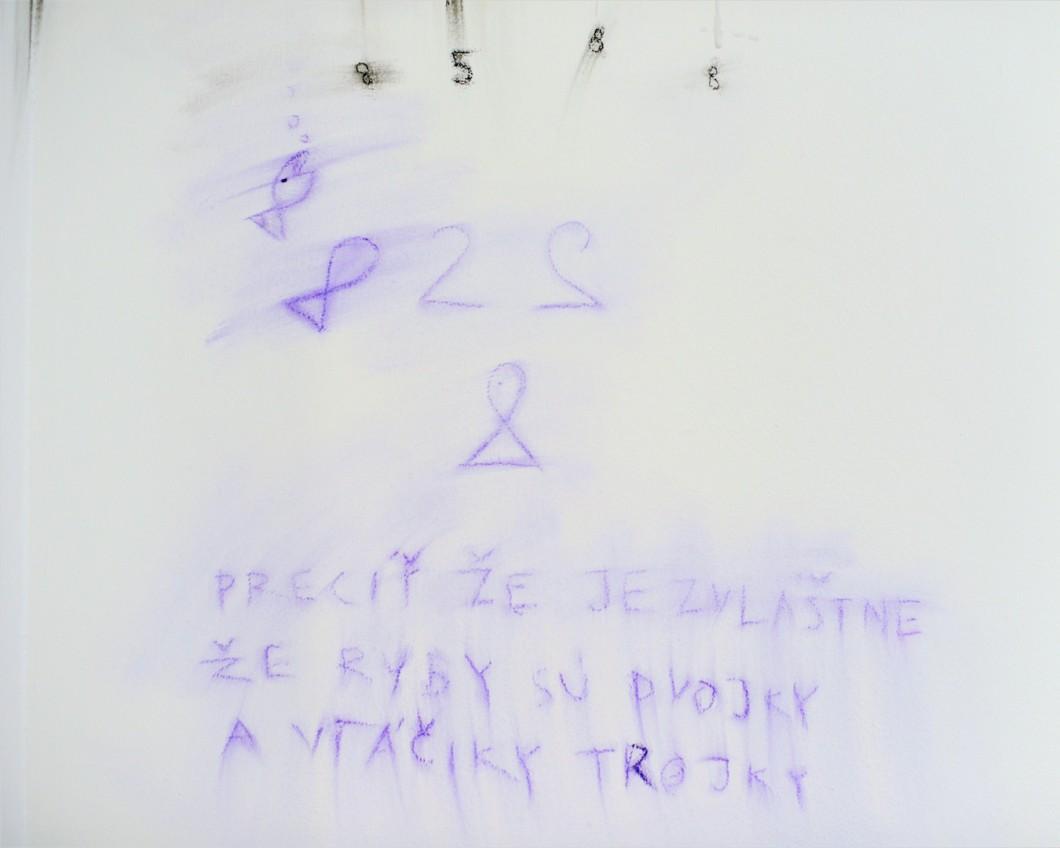 DSC_7540 copy