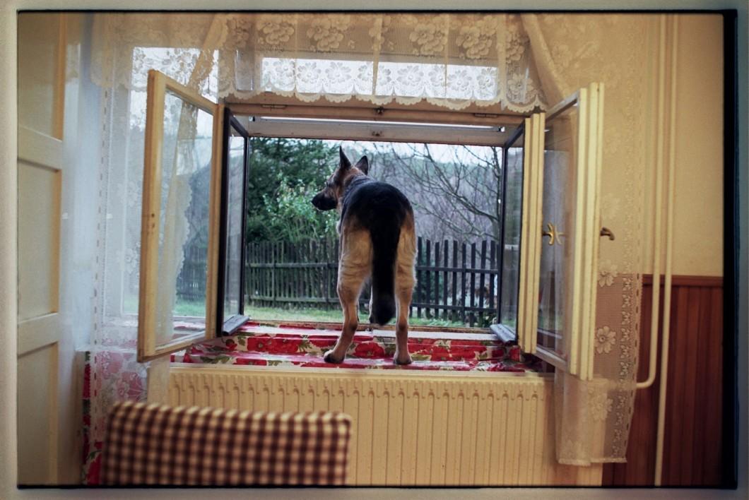 Dar od Kateřiny Šedé, video Paniččino všecko (záběr), 2007-2010, 18:23
