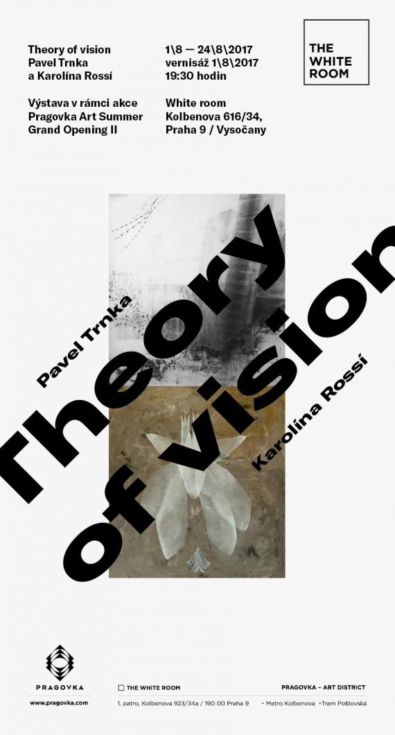 pozvanka_email_Theory of Vision