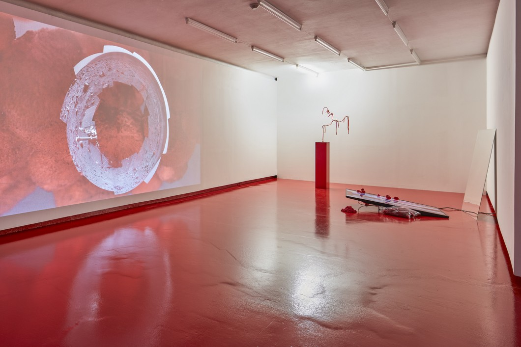 05_Sylbee Kim, The Red Liquid and Narcissus, Installation View, Nevan Contempo, 2017