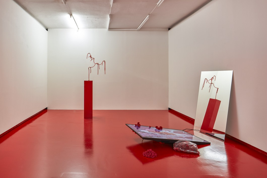 06_Sylbee Kim, The Red Liquid and Narcissus, Installation View, Nevan Contempo, 2017