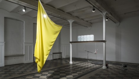Troels Sandegaard: Bodies and Bodies / 2014